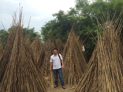 finding-a-factory-bamboo-drying