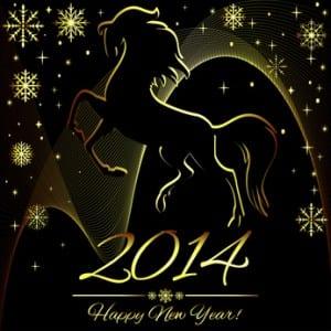 new-year-horse-fireworks